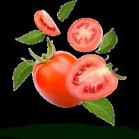 en-bonanza-fresh-tomates